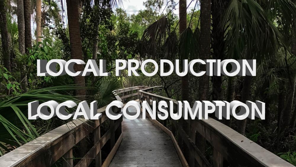 local_production_consumption_solar_news_optimus_solar_mount_dora.png