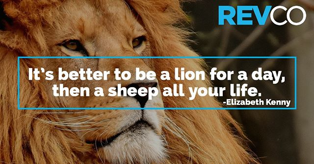 "A little #wednesdaywisdom for ya! . ""It's better to be a lion for a day, then a sheep all your life."" - Elizabeth Kenny . #revco #coffeeconnectcreate #lions"