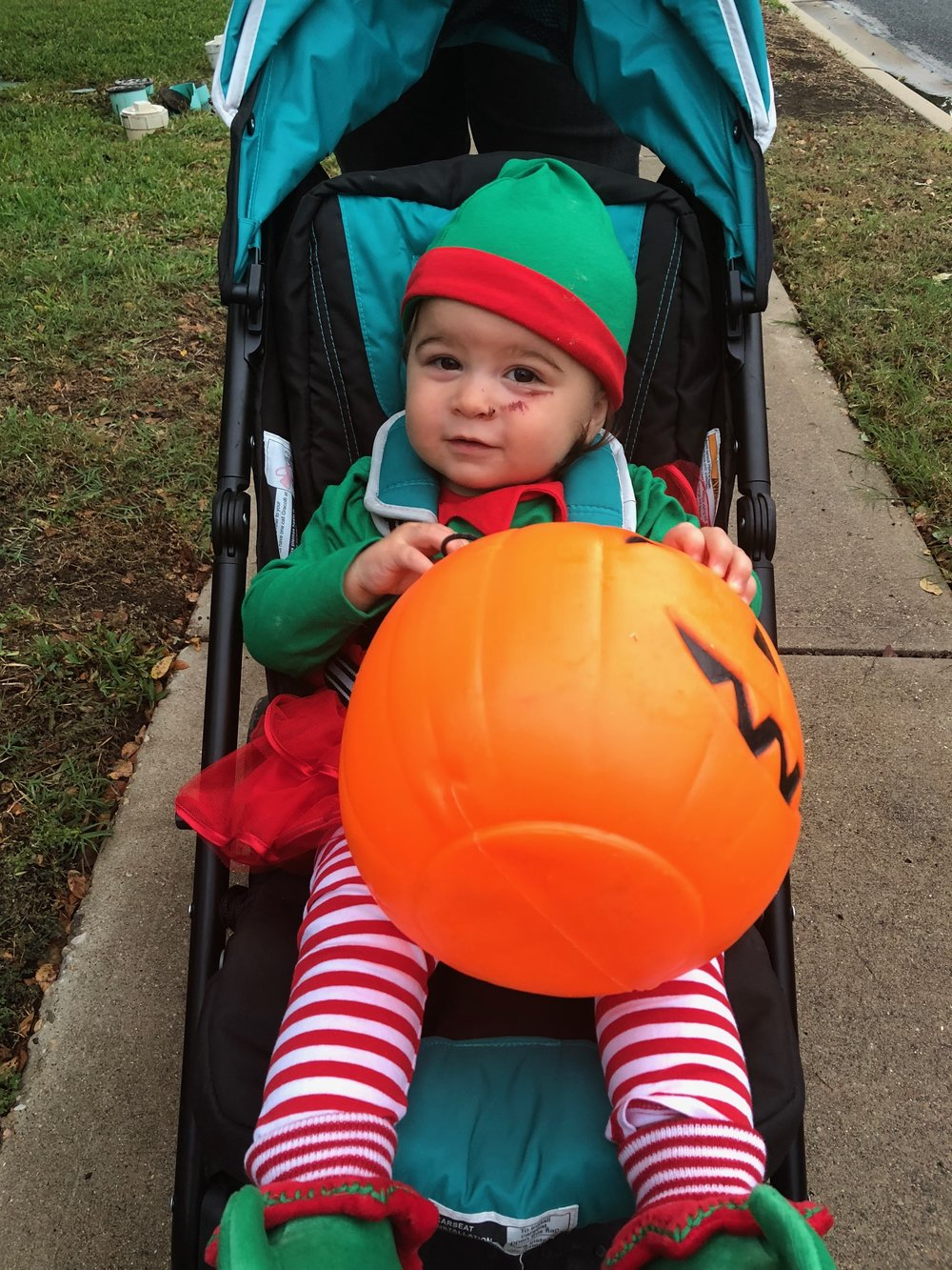 Have you ever seen a cuter Christmas Elf on Halloween?(Note face scrape from race day mishap, see previous blog entry.)