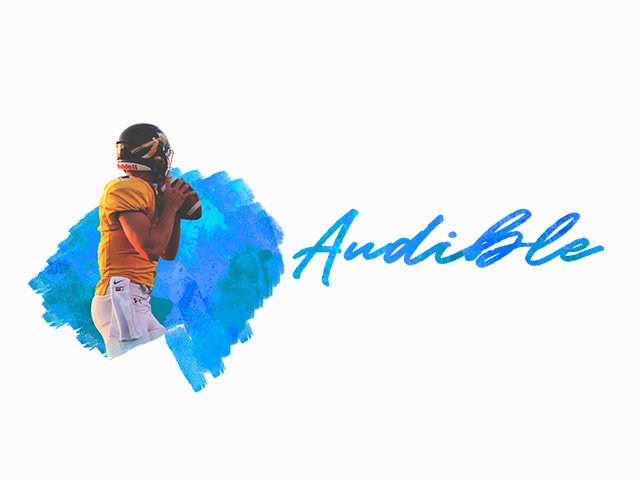 Audible - SD Graphic.jpg