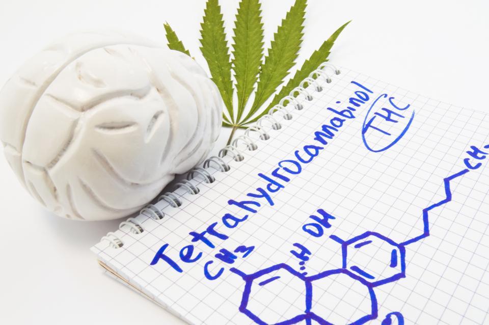 THC_Brain.jpg
