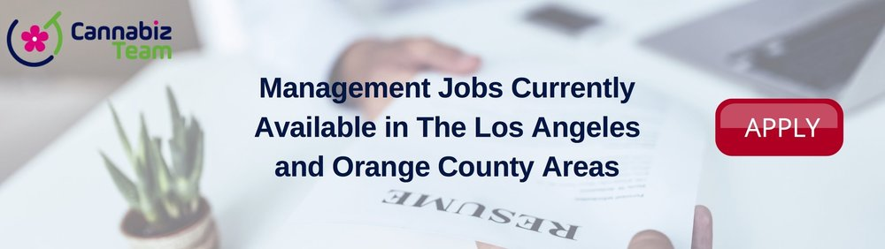 Management Jobs Apply Banner.jpg