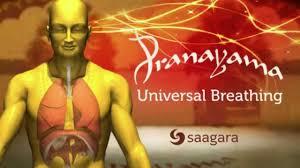 pranayama breathing app.jpg