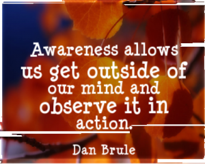 Awareness allows us to get outside of our mind and observe it in action.  -Dan Brule