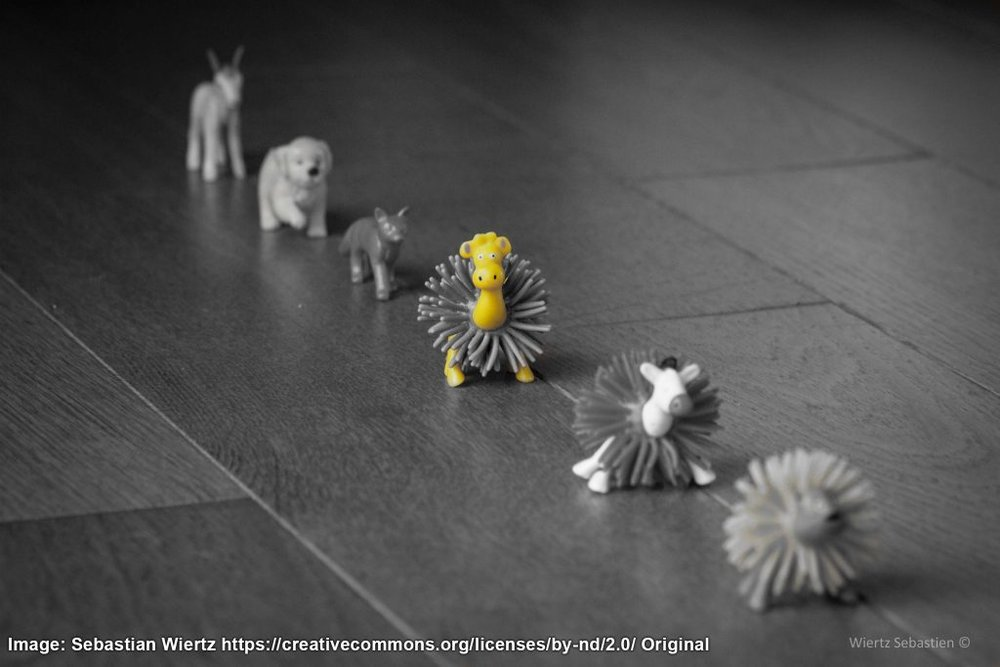 Toy animals marching in a row
