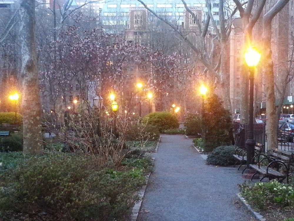 New York park at dusk with street lights glowing and new springs buds on the trees
