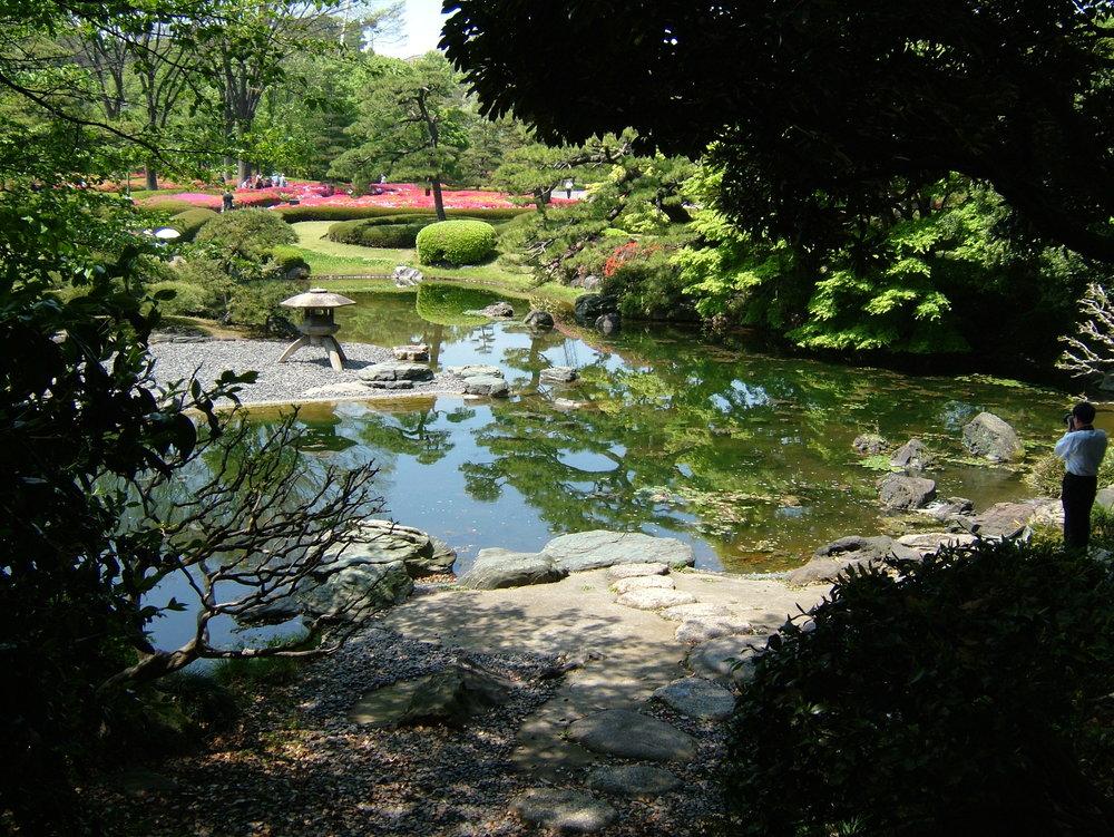 Japanese Garden—Tokyo Emperor's Palace