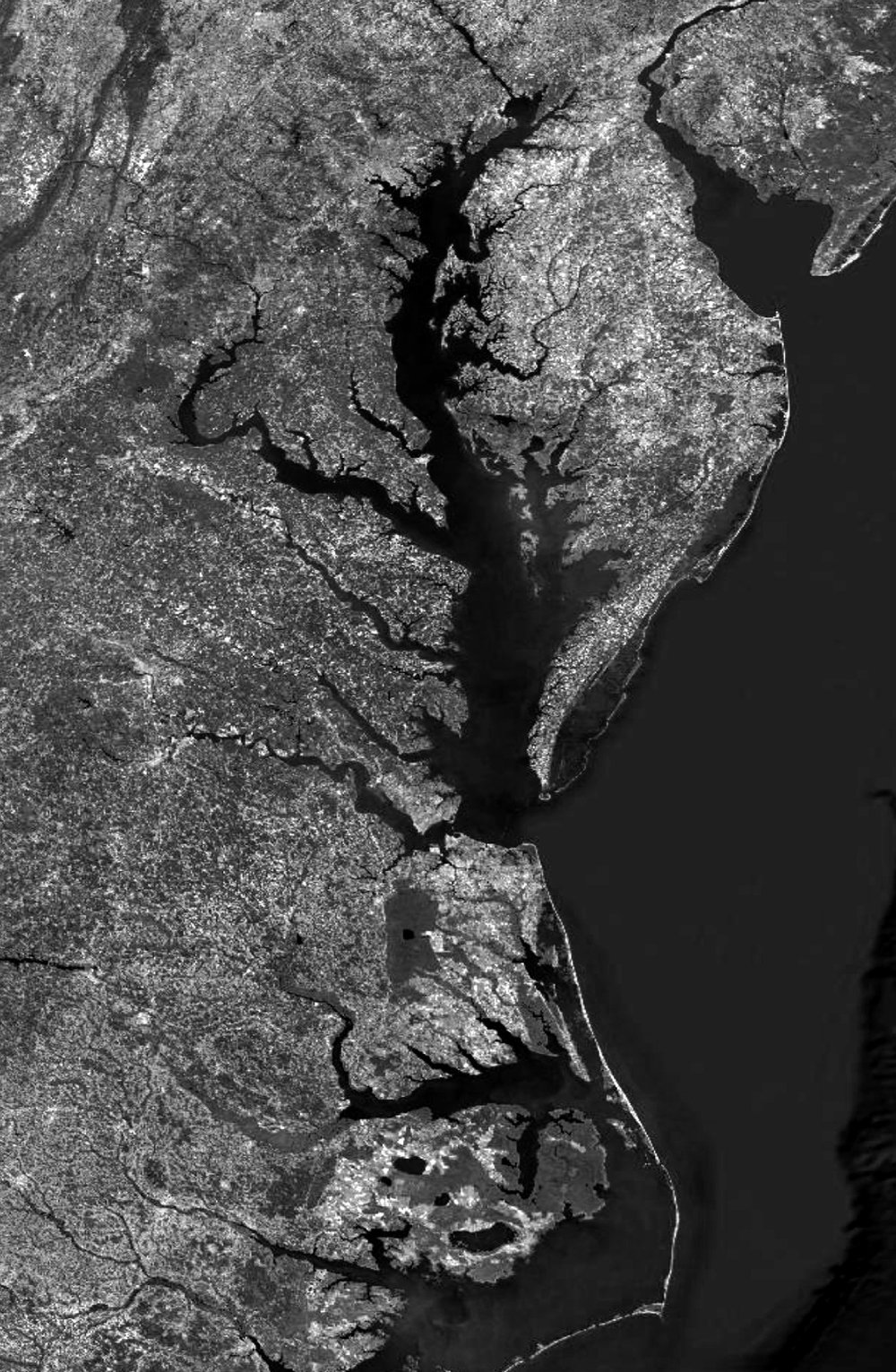3_E_1_B_Tidewater-Aerial.jpg
