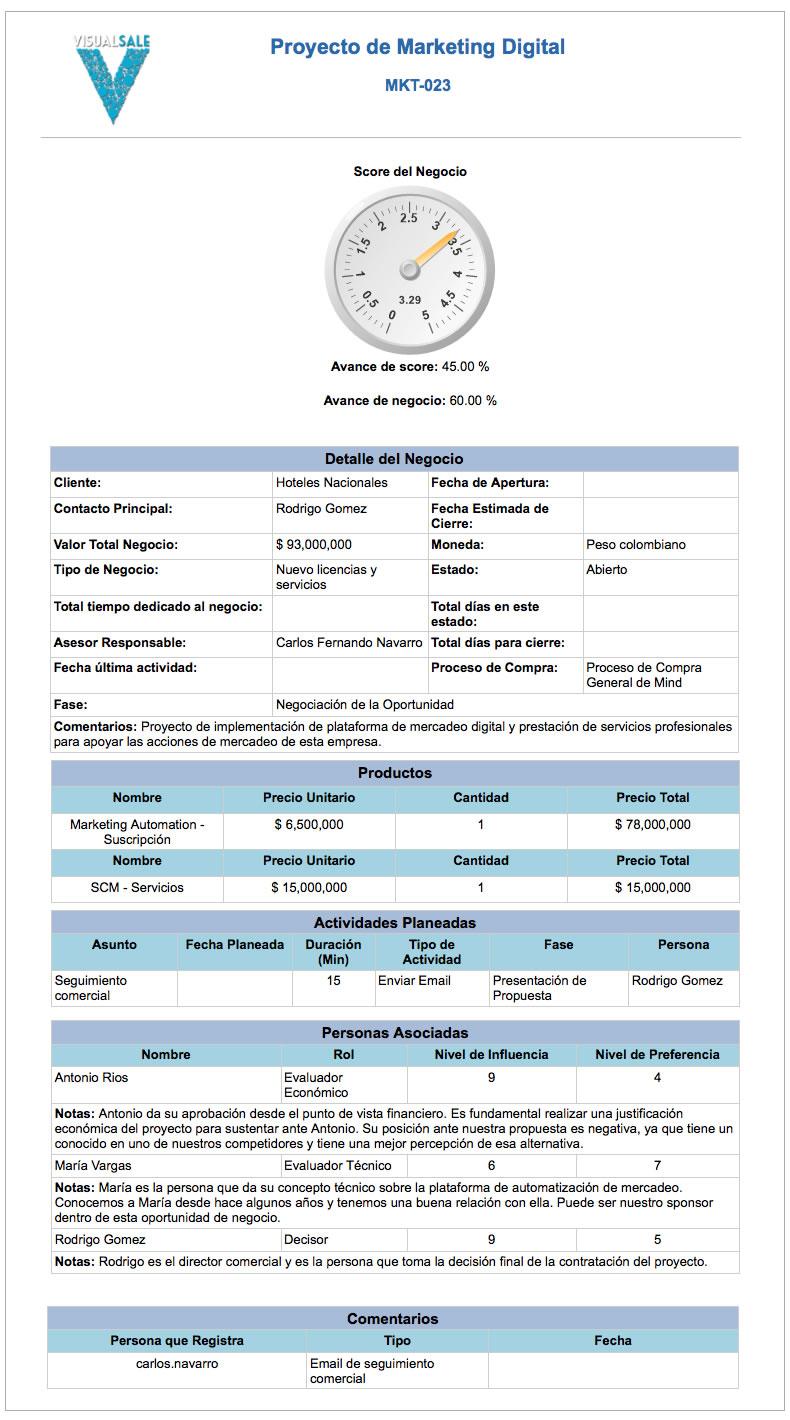 Reporte Negocio VIsualSale CRM.jpg