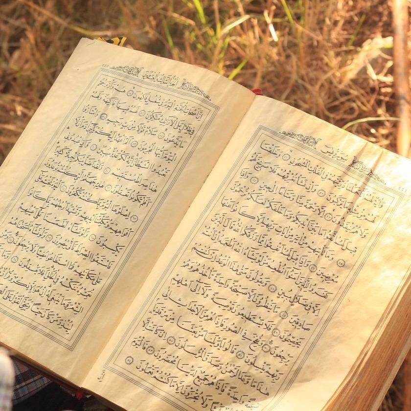 quran and hadith -