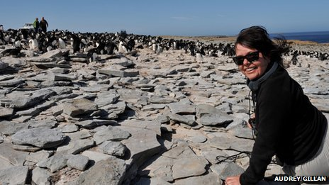 Reporter Audrey Gillan at a Falklands penguin colony
