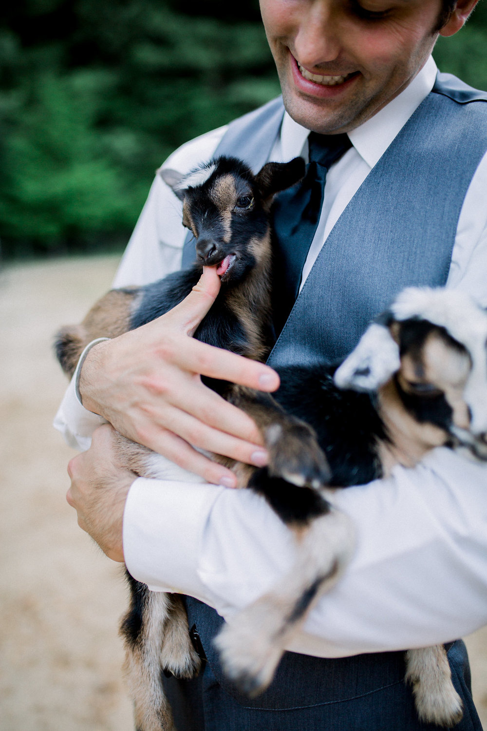 groom holding baby goats on wedding day in redwoods kim baker beauty san jose california makeup artist