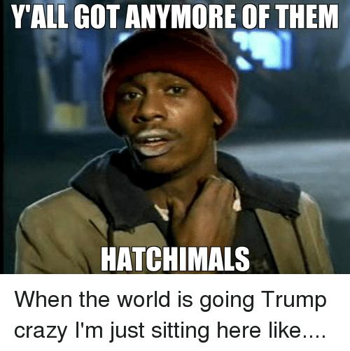 hatchimals.png