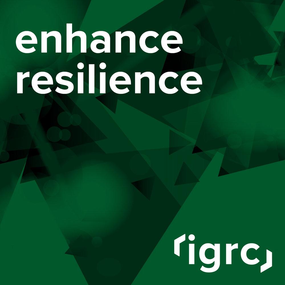 ie_Service_Product_IGRC_1.jpg