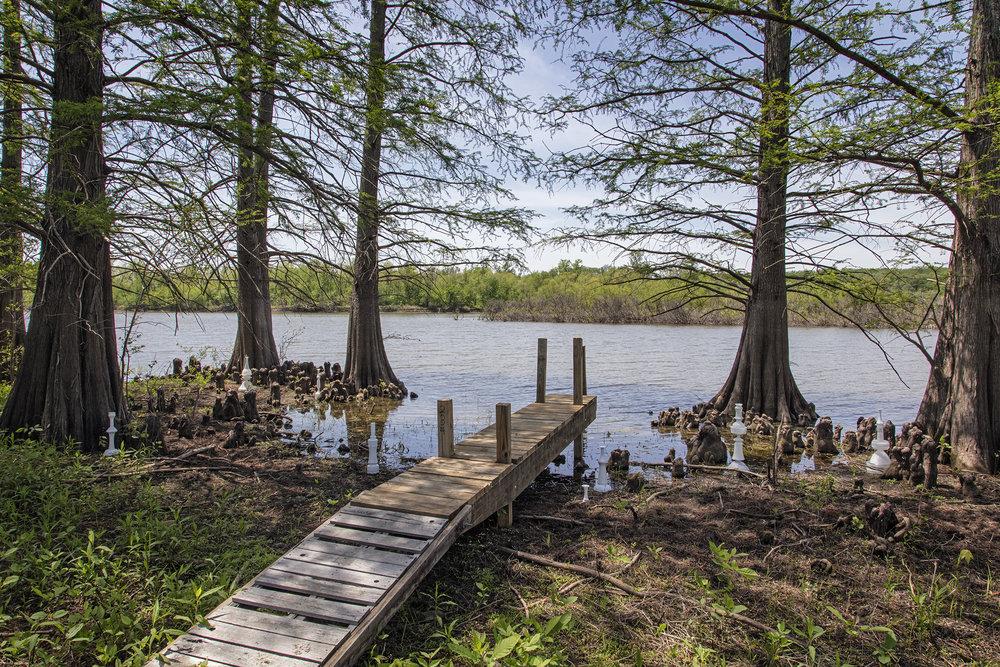 Stump Lake Knees