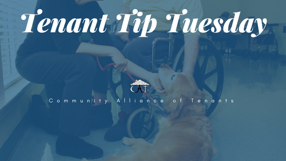 Tenant Tip Tuesday disability.png