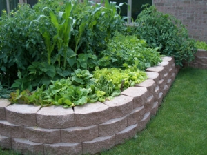 Installing a raised bed garden planter allows for adding an ideal soil mix right from the start. -