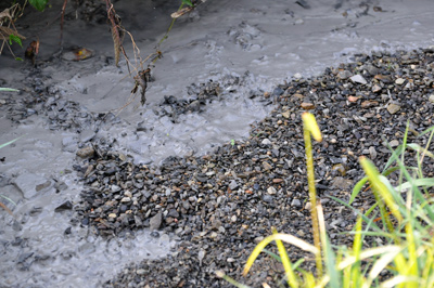 Gas pipeline construction has resulted in ongoing bentonite spills into small streams. Bentonite suffocates aquatic life with gills and smothers fish eggs.