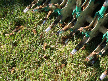 """Core aerator pulls soil """"plugs"""" — leave them on the lawn."""