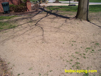 A thin layer of shredded topsoil was used to smooth the area and create a seed bed.