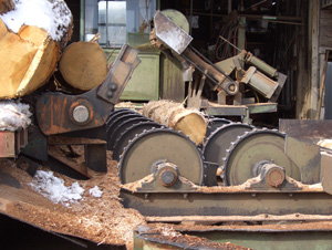 Rollers - One by one the logs are fed onto a roller system.