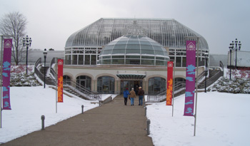 Phipps in Pittsburgh, PA is always fun to visit during winter weather. Viewing the colorful and exotic Orchids, as well as other tropical plants, provides a nice respite from winter ice and snow.