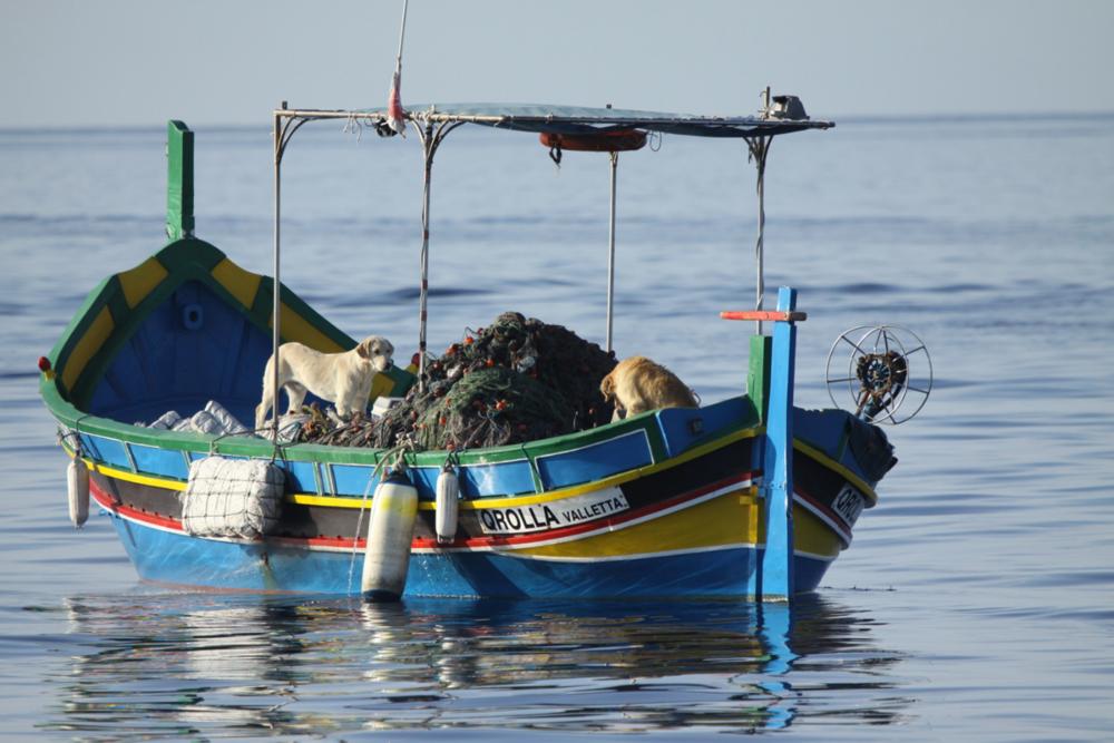 TRABAJAR CON LOS PESCADORES COMO ADMINISTRADORES DE LA BIODIVERSIDAD - Para ayudar a conservar la biodiversidad en nuestro sector pesquero, creemos que es importante capacitar a los pescadores con habilidades de liderazgo positivo y compartir nuestro conocimiento de la ciencia marina con ellos. Establecimos un programa pionero de capacitación para erradicar las actividades de pesca ilegal y no regulada que ahora se está utilizando en todo el mundo.