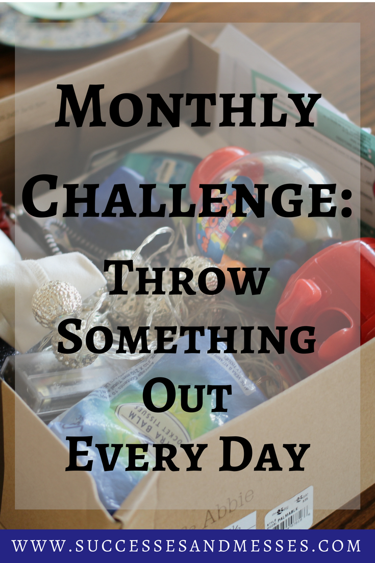 Monthly Challenge   Throw Something Out Every Day    Successes and Messes Lifestyle Blog
