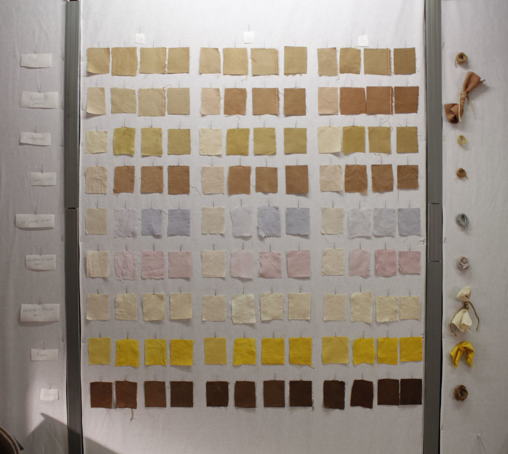 Natural Dye Display (detail)