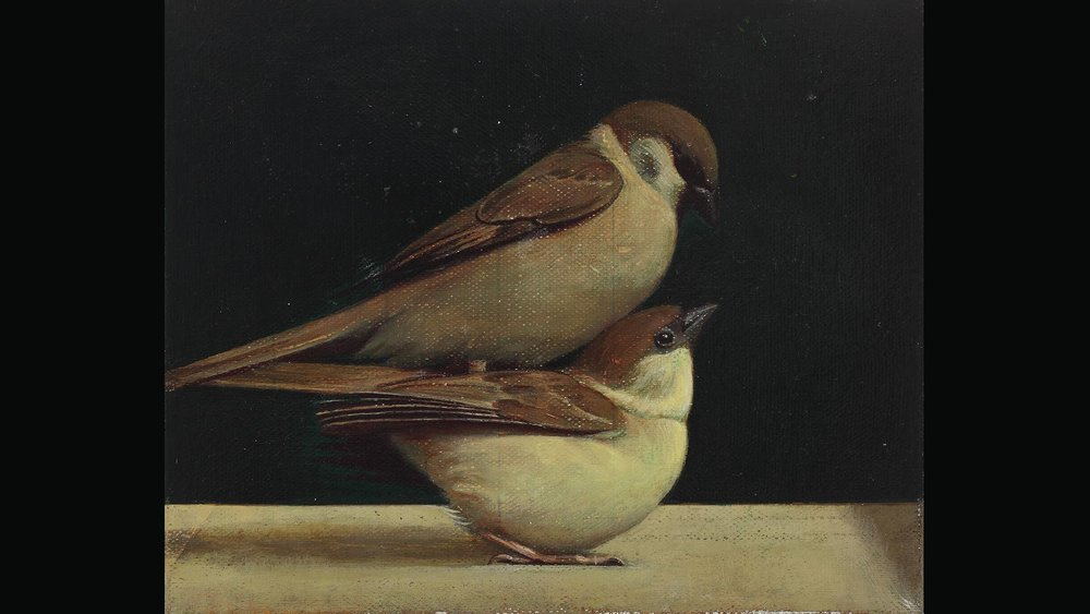 Bird on Bird, 2011. Wang Bing Collection, Beijing.