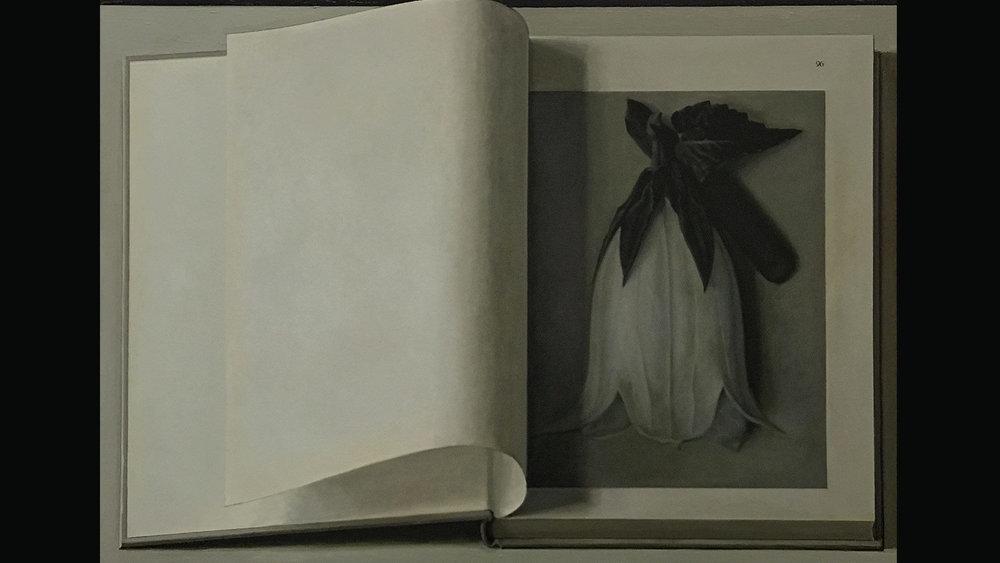 Booking Painting No. 20, (Blossfeldt, Urformen der kunst, verlag Ernst wasmuth GMBH, Berlin, 1936.), 2017. Private Collection, Beijing.