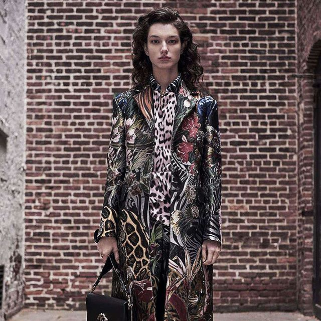 World-known for his prints, the new Cavalli collection conveys his love for nature and his unbridled creativity. To see the collection, click the link in our bio. 🐯 #guildmag #guildlifestyle #robertocavalli #cavalli #fashion #style #animal #world #prints #concretejungle #moda