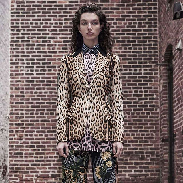 With his new collection for Fall Winter 2019 Ready to Wear, Cavalli continues his tradition of respect for traditional craft with a firm will to experiment.  To see the collection, click the link in our bio. 🐯 #guildmag #guildlifestyle #robertocavalli #cavalli #fashion #style #animal #world #prints #concretejungle #moda