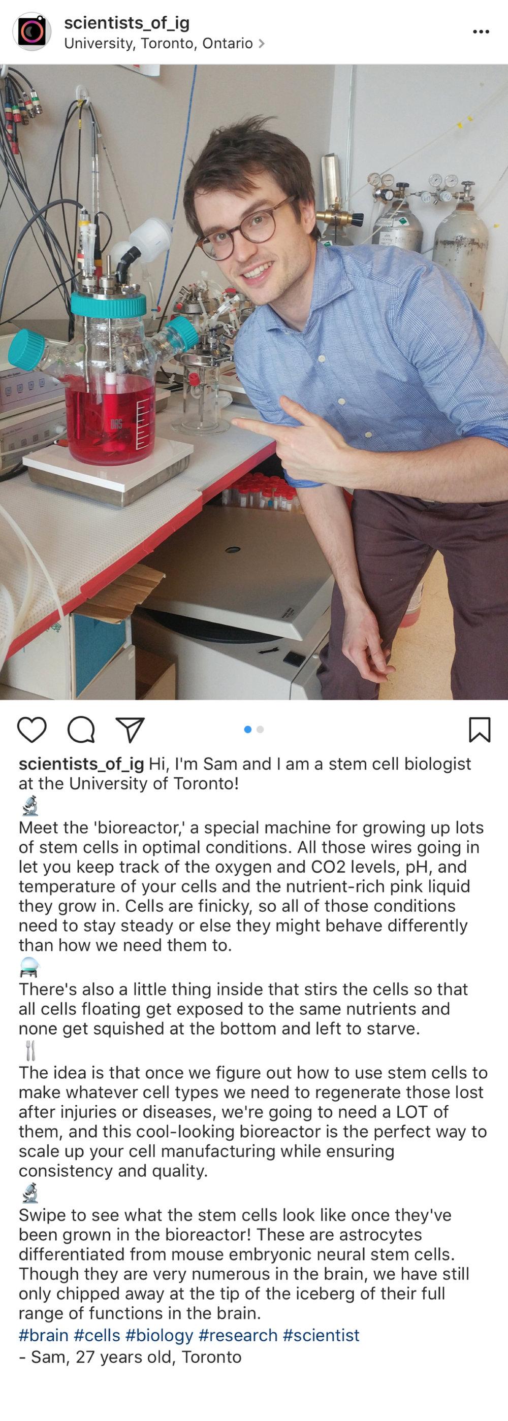 Bioreactor 3a.jpg