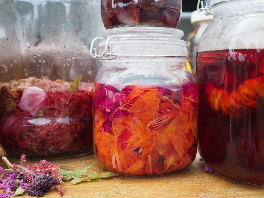 Ellie Beck Petalplum natural dye workshop colourful jars.JPG