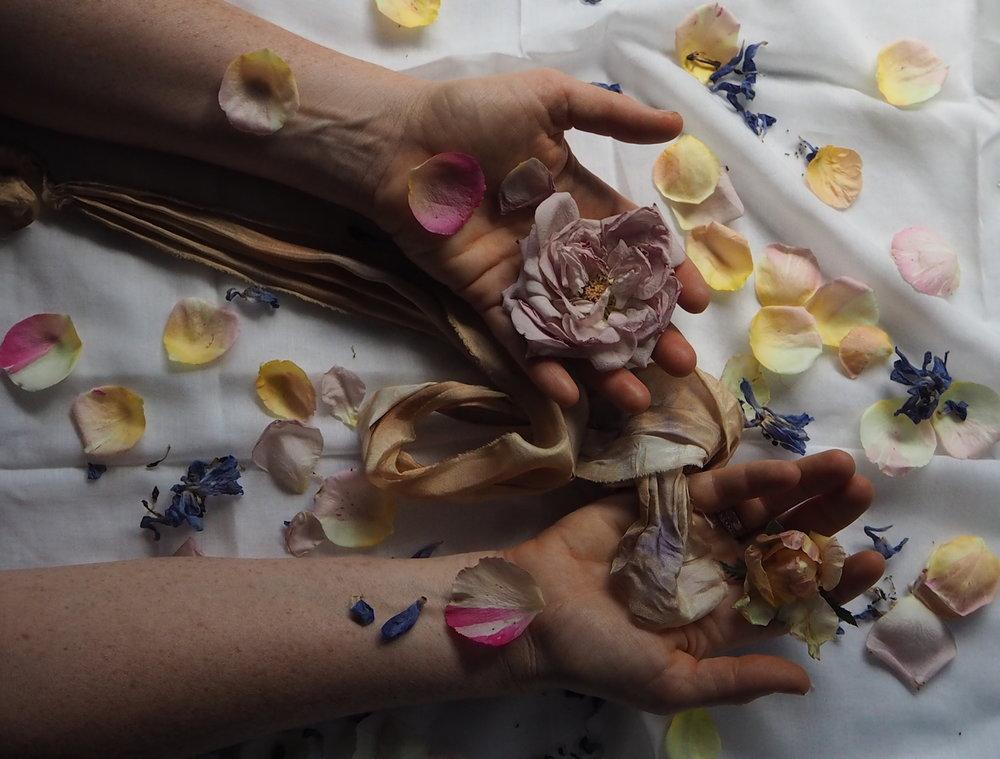Ellie Beck Petalplum roses in hands.JPG
