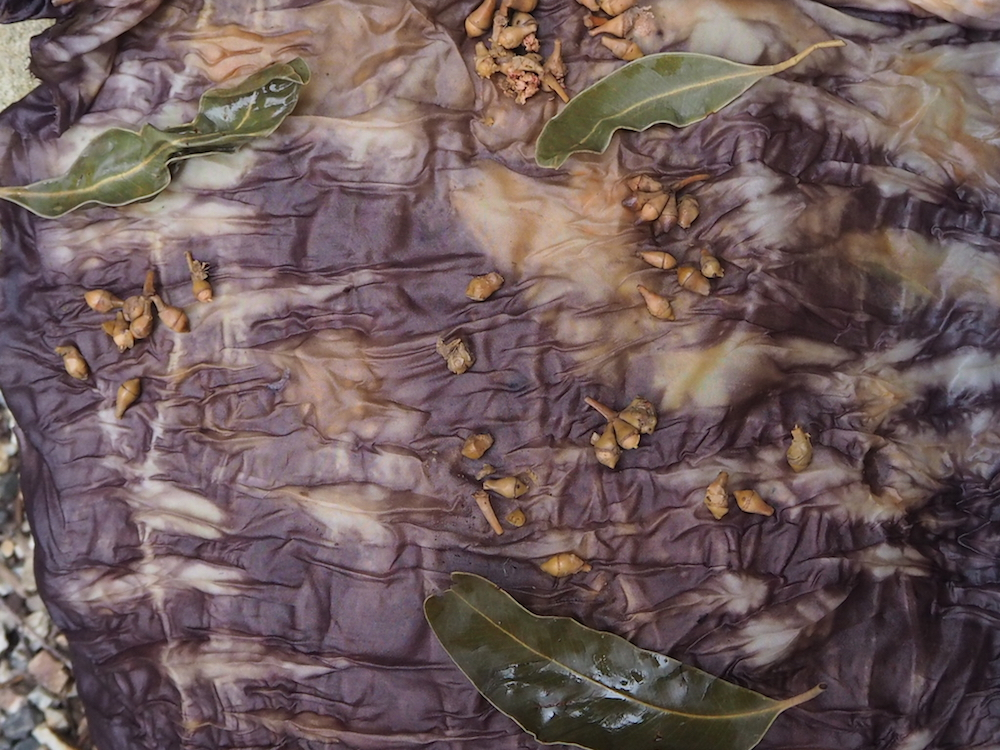 Ellie Beck_Natural Dye with Eucalyptus leaves How to DyeIMG_0937.JPG