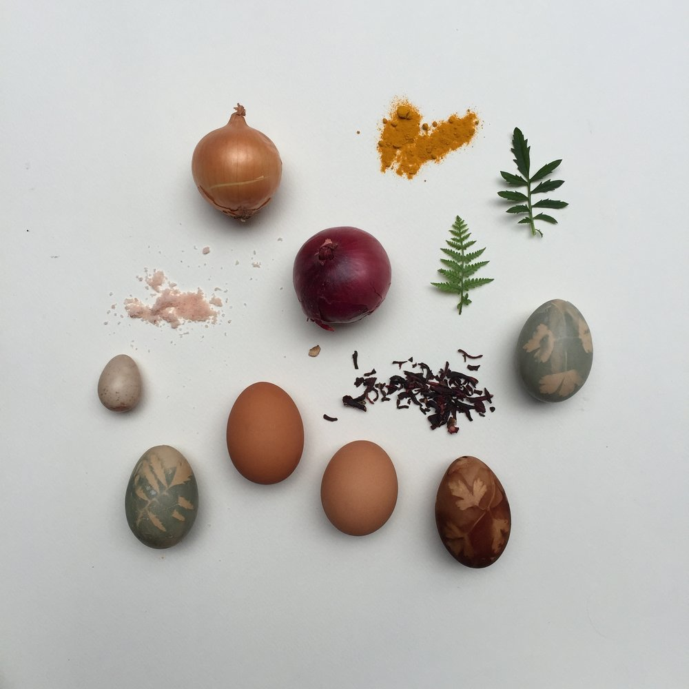Naturally dyed eggs for Easter how to make by Ellie Beck Petalplum
