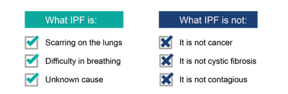 Figure 2: Understanding what Idiopathic Pulmonary Fibrosis is (adapted from: ⁷