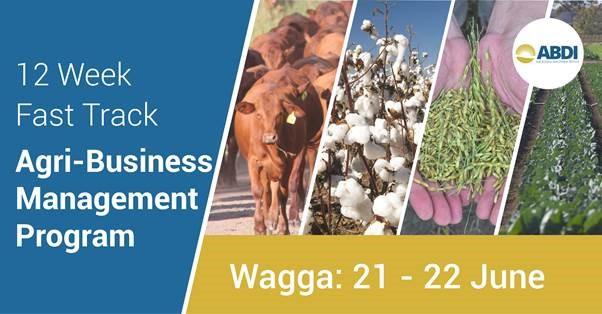 agribusiness management program.jpg