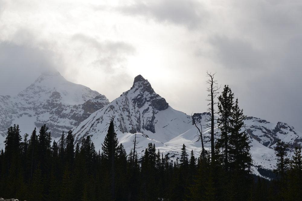 Banff to Jasper