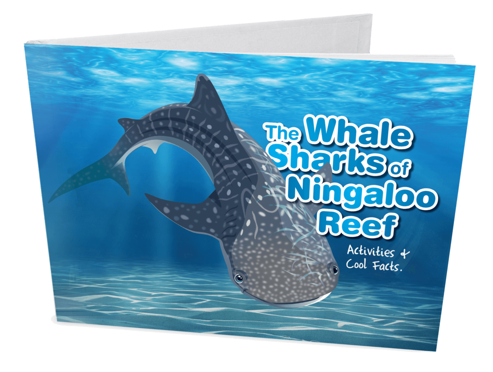 Whaleshark-Book-Cover-Mockup.png