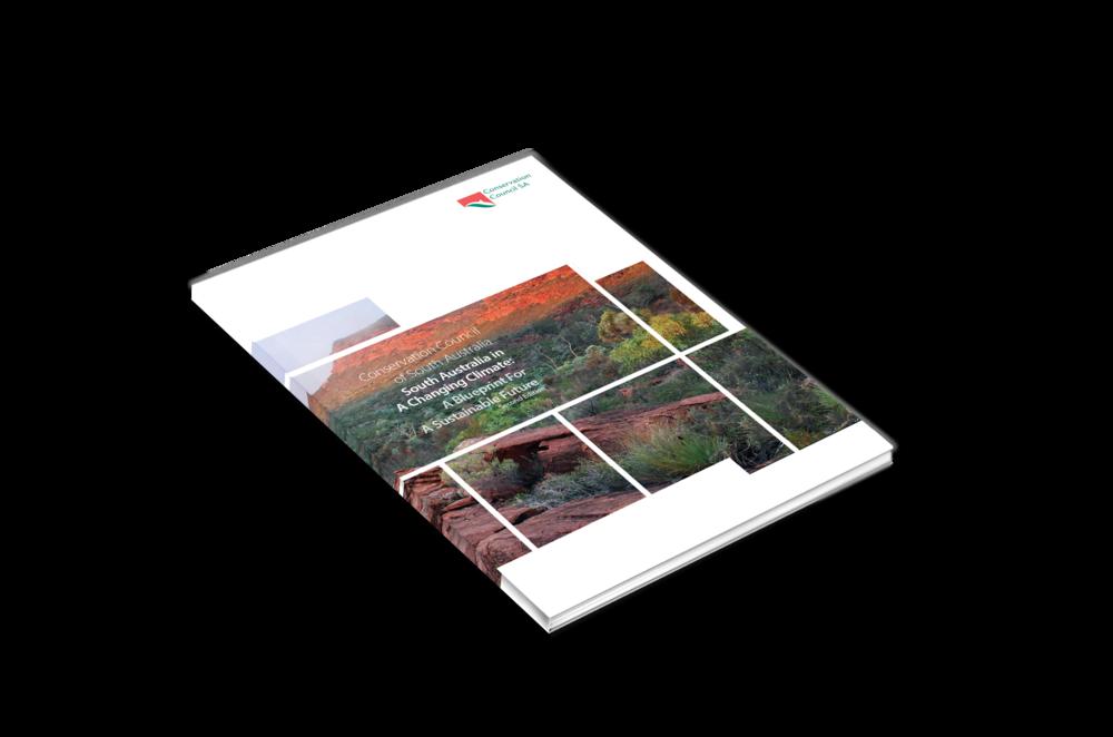 CCSA-cover2.png