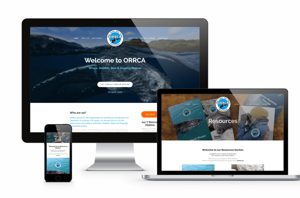 orrca-site.png