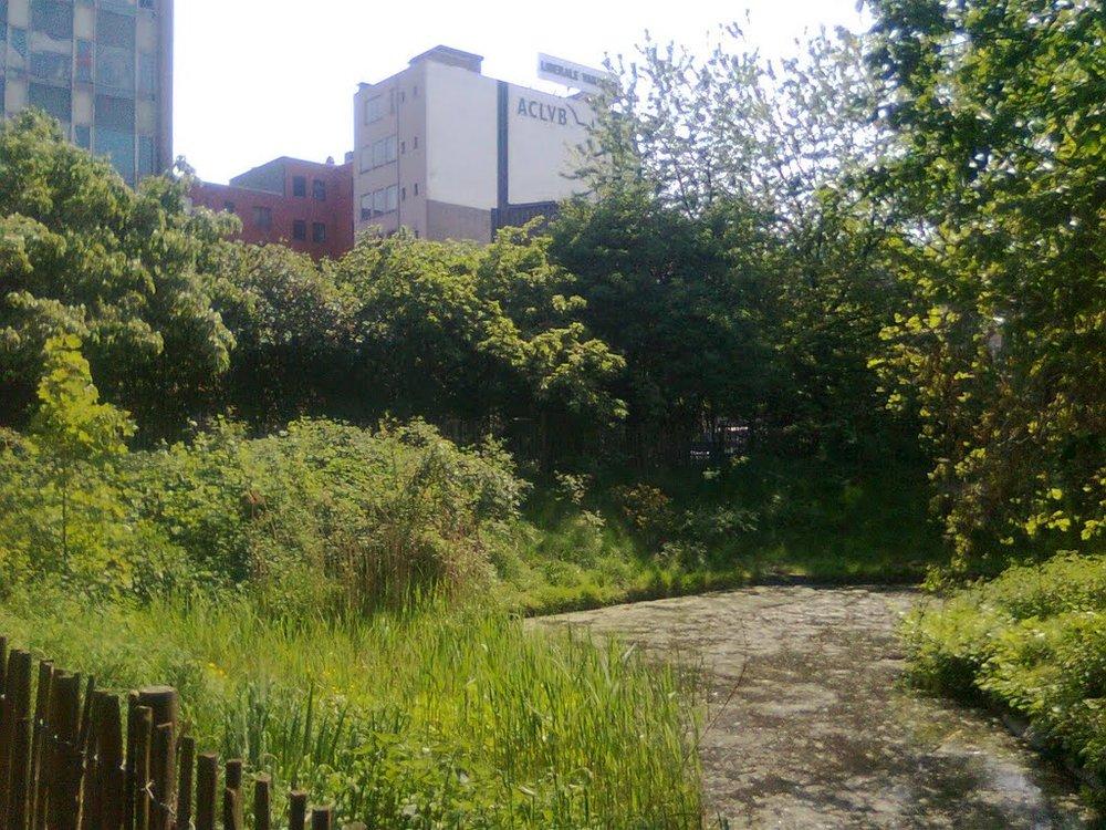La ferme urbaine du parc Maximilien veut jouer un rôle dans la gestion des déchets de la ville.