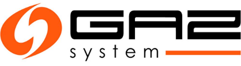 Gaz-System-Logo-mq7f0fvmkqh3yagdvtv24s9mj1r0azj0mvph7w9jg8.png