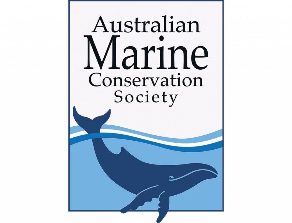 australian-marine.jpg
