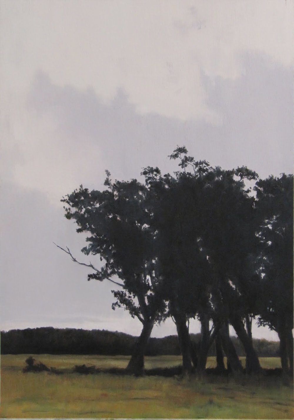 The Shelter Trees