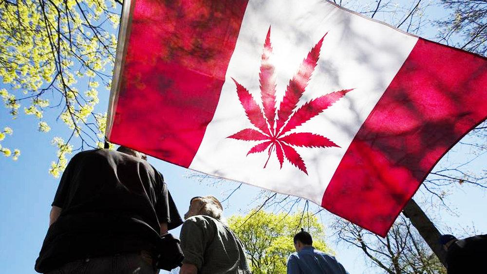 canada-marijuana (1).jpg