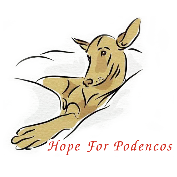 Hope for Podencos